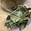 Thumbnail: Neem leafs