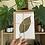 Thumbnail: Tarjetas florales   Papel Natura