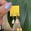 Thumbnail: Mini tears by Hearts Ceramics