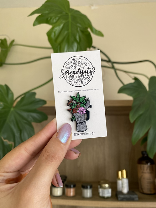 Cafetera plant pin by serendipity