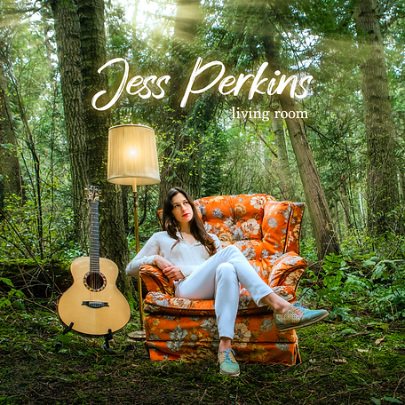 Jess Perkins living room - front cover -