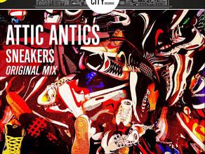 ANTICS IN YOUR ATTIC!