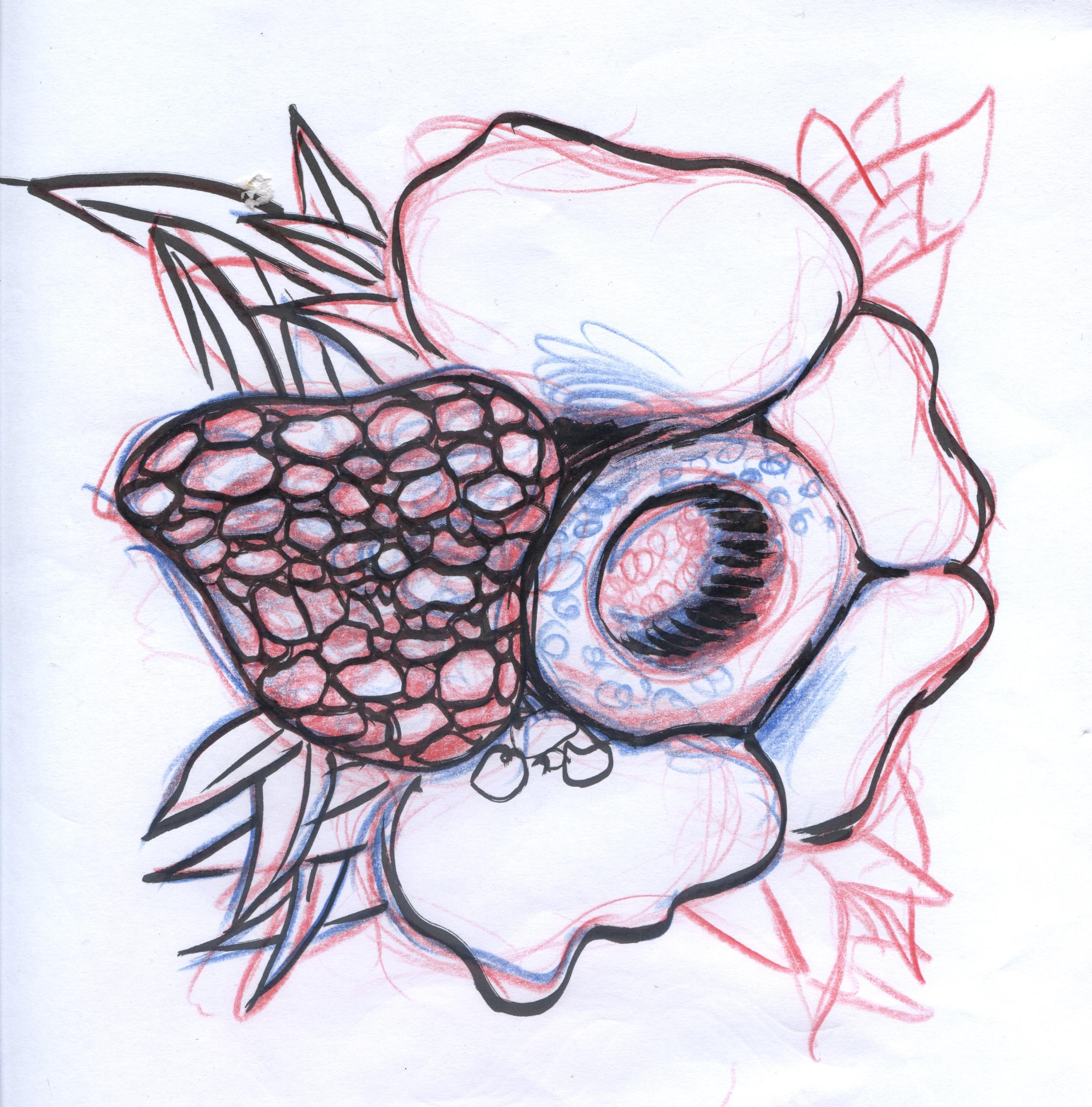 Genetic bloom_dessin projet fleurs (6)