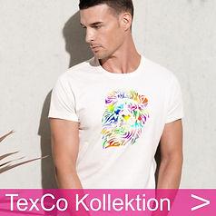 Startbild TexCo Kollektion 40x40.jpg