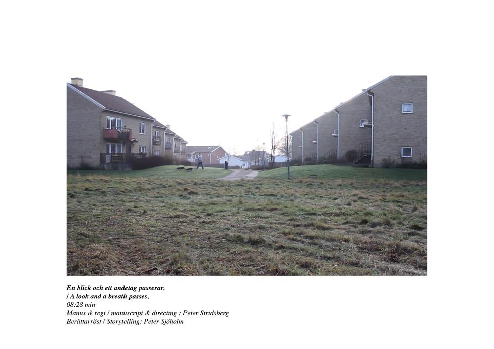 En stillbildsfilm från kvarteret Sidan i nordvästra Skåne på en mindre ort vid Söderåsens mynning. Där jag har valt att arbeta med en enkelt bildspråk som skildrar människorna och platsen mitt i vardagsrutinen. Jag har kombinerat det dokumentära tillvägagångssättet  med att tillföra en fiktiv berättelse från en annan plats som tillsammans skapar en stämningsfilm. Denna stämningsfilmen skildrar och utforskar begreppet om tid och det som är på väg att inträffa mitt i vardagen.   / A still film from the side of the Sidan in northwestern Skåne in a small town at the mouth of Söderåsen. Where I have chosen to work with a simple imagery that depicts the people and the place in the middle of everyday life. I have combined the documentary approach with adding a fictional story from another place that together creates a mood film. This mood film depicts and explores the concept of time and what is about to happen in the middle of everyday life.