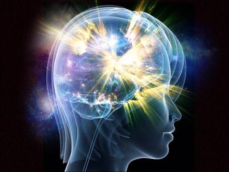 I sensi: la nostra tecnologia interna