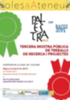 CARTELL PALESTRA 2019.PNG