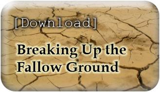 fallowground.jpg