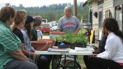 Making herb gardens -1