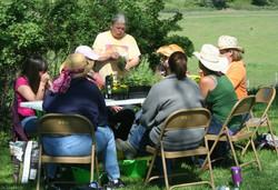 Creating herb gardens