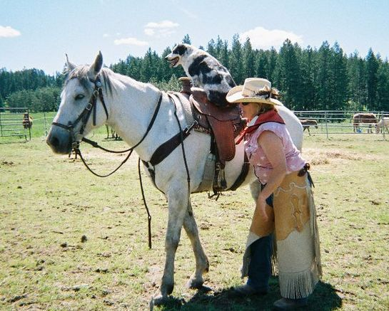 Cowgirl Shannon saddles her dog