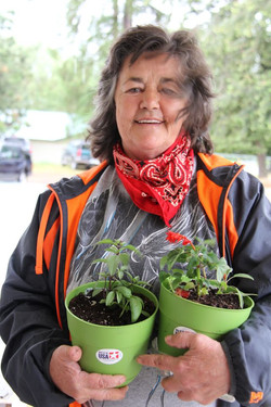 Herbs to take home