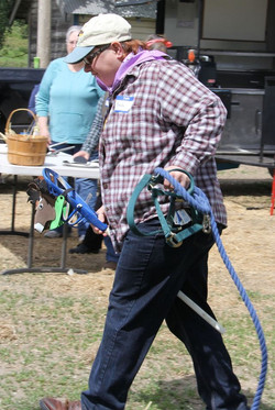 6 - Ridin and Wranglin the Cow in the Cowgirl Chores race