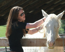 Horse love -1