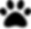 Screen Shot 2020-06-04 at 3.20.56 PM.png