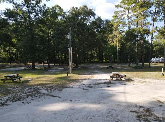 Site 29 on left pull-through