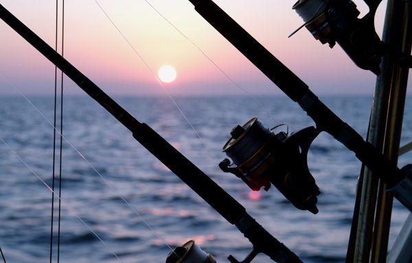 Gulf Coast Salt Water Fishing -