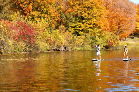 stand-up-paddle-2093767_1920.jpg