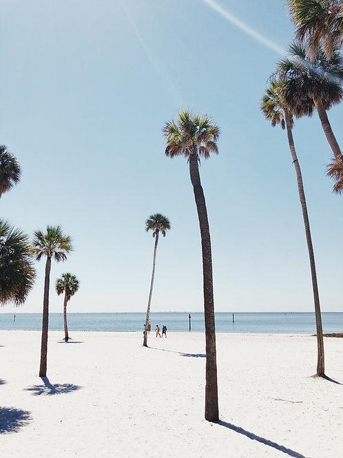 Coconut Island-  Tropical Coconut, Vanilla and Ocean Vibes - Wax Melt