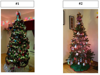 Cast Your Vote! 2020 Tree Decorating Contest