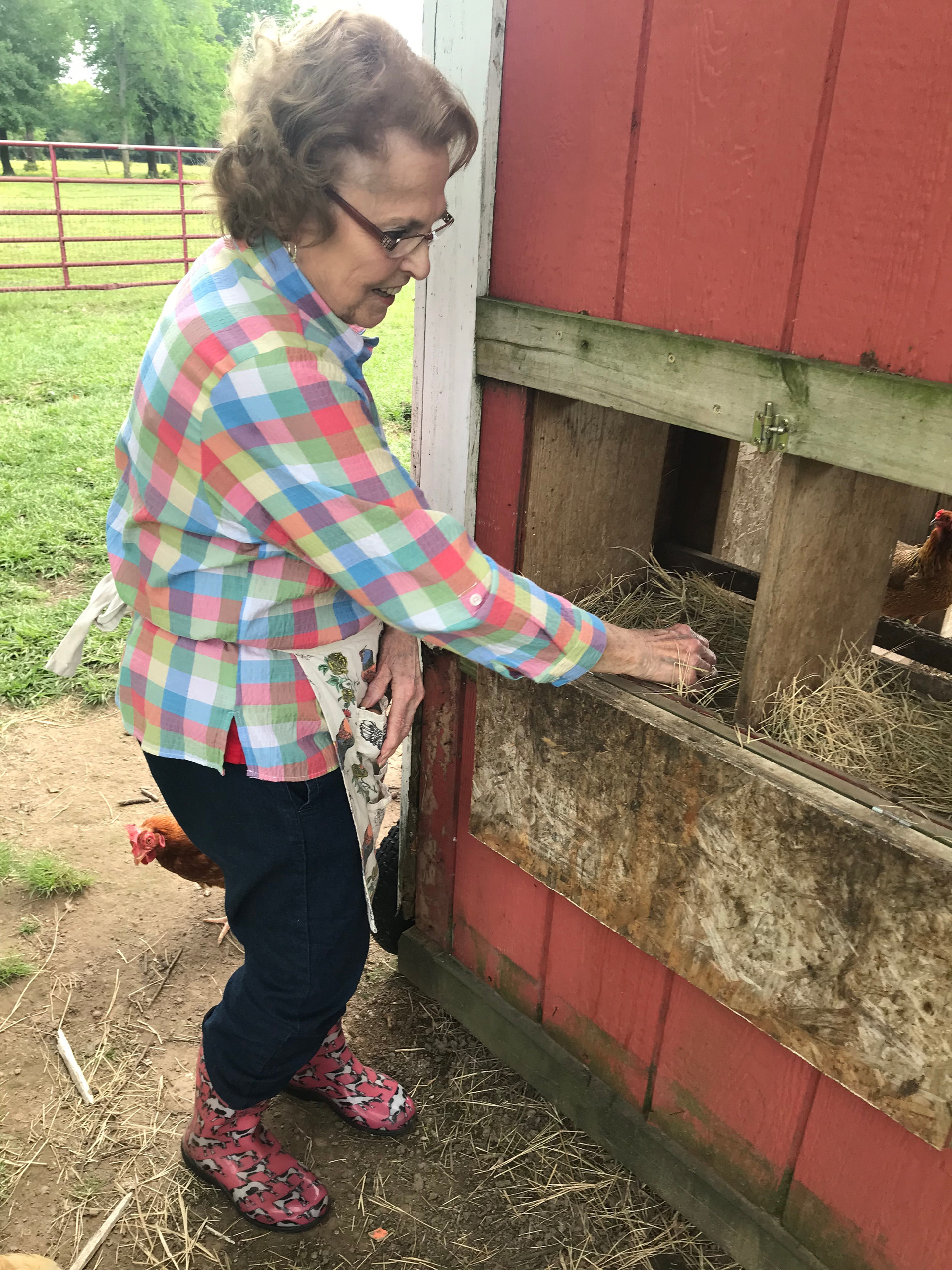 farm, ranch, vacation, Texas, country vacation, HelloRedBarn, modern farm stay, kid friendly vacation
