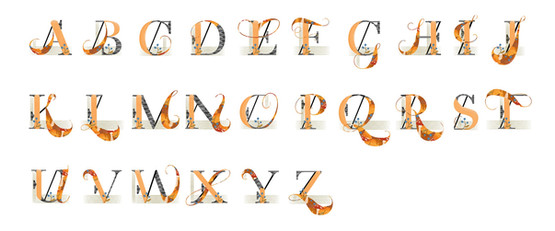 Silly Squirrel Font