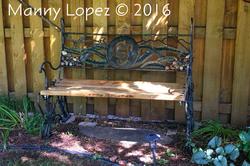 Bench, 2016