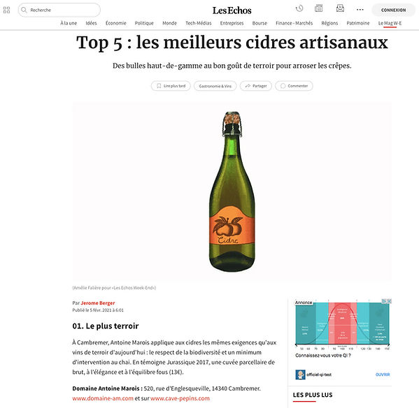 Domaine Antoine Marois - Les Echos - 2021-02-05