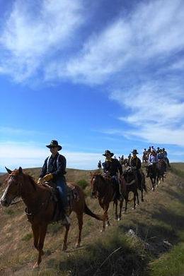 horseback riding near billings mt
