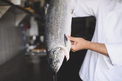 Canaletto - Fresh Fish