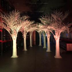 WHITE PALM TREES 3