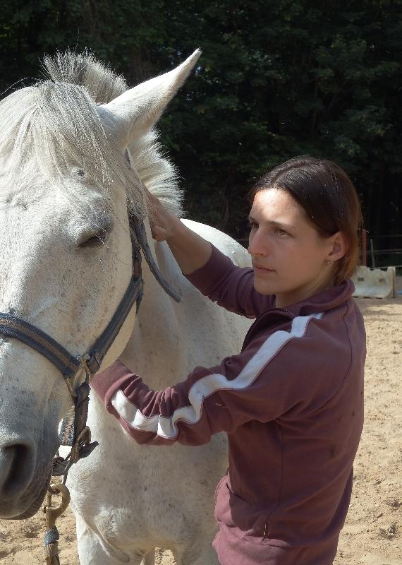 shiatsu cheval