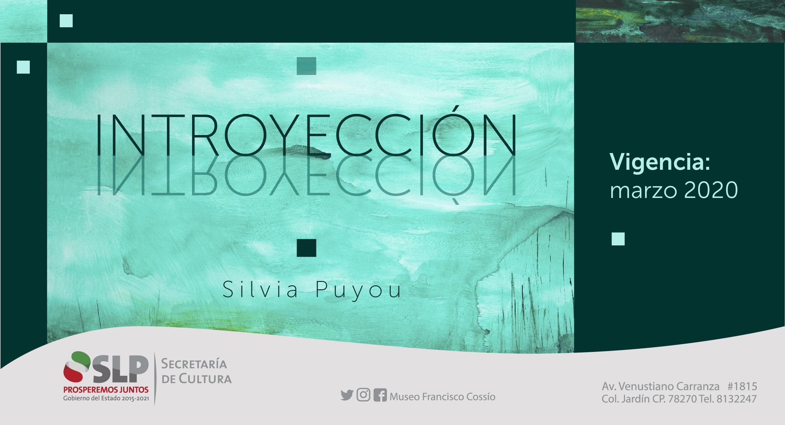 Banner pag. web Silvia-01