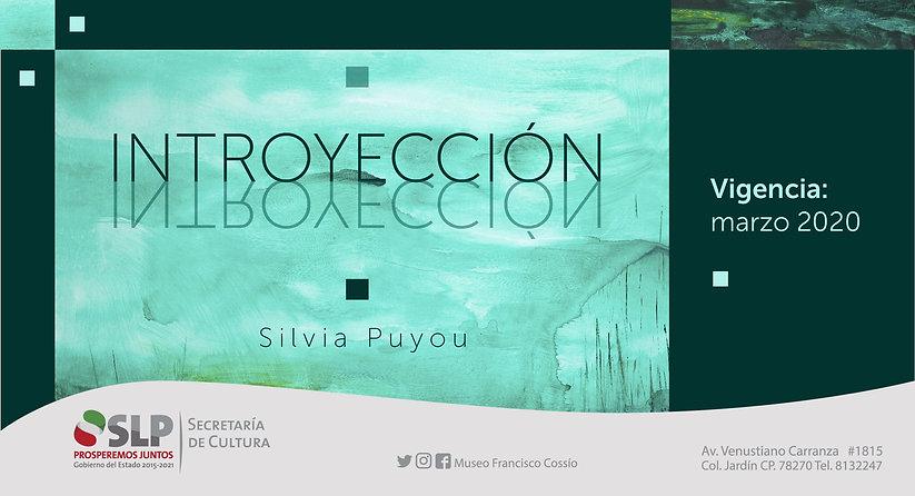 Banner pag. web Silvia-01.jpg