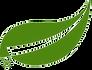 leaf_150.png