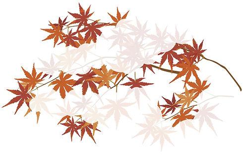 autumnleaves_edited.jpg