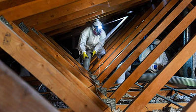 attic-clean-out-rodent-control-service.j