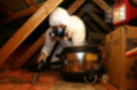 attic-cleaning.jpg