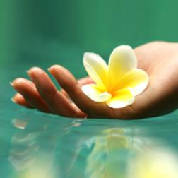 beauté des mains et vernis semi permanent