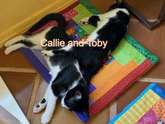 Callie and Toby_edited.jpg