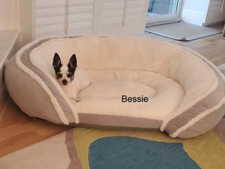 Bessie 21-0107_edited.jpg