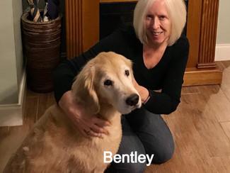 Bentley%252020-0107_edited_edited.jpg