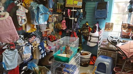 PetStore_Interior.jpg