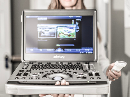 How to make $1000 a day in your mobile ultrasound business.