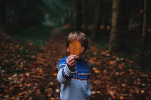 Boy holding autumn leaf