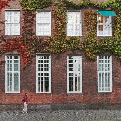 REDvsGREEN- København, Denmark