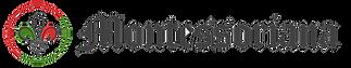 logos siteNOVA-01.png