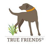 truefriends.jpg