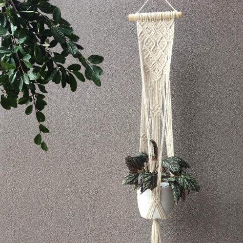 Phil Plant Hanger