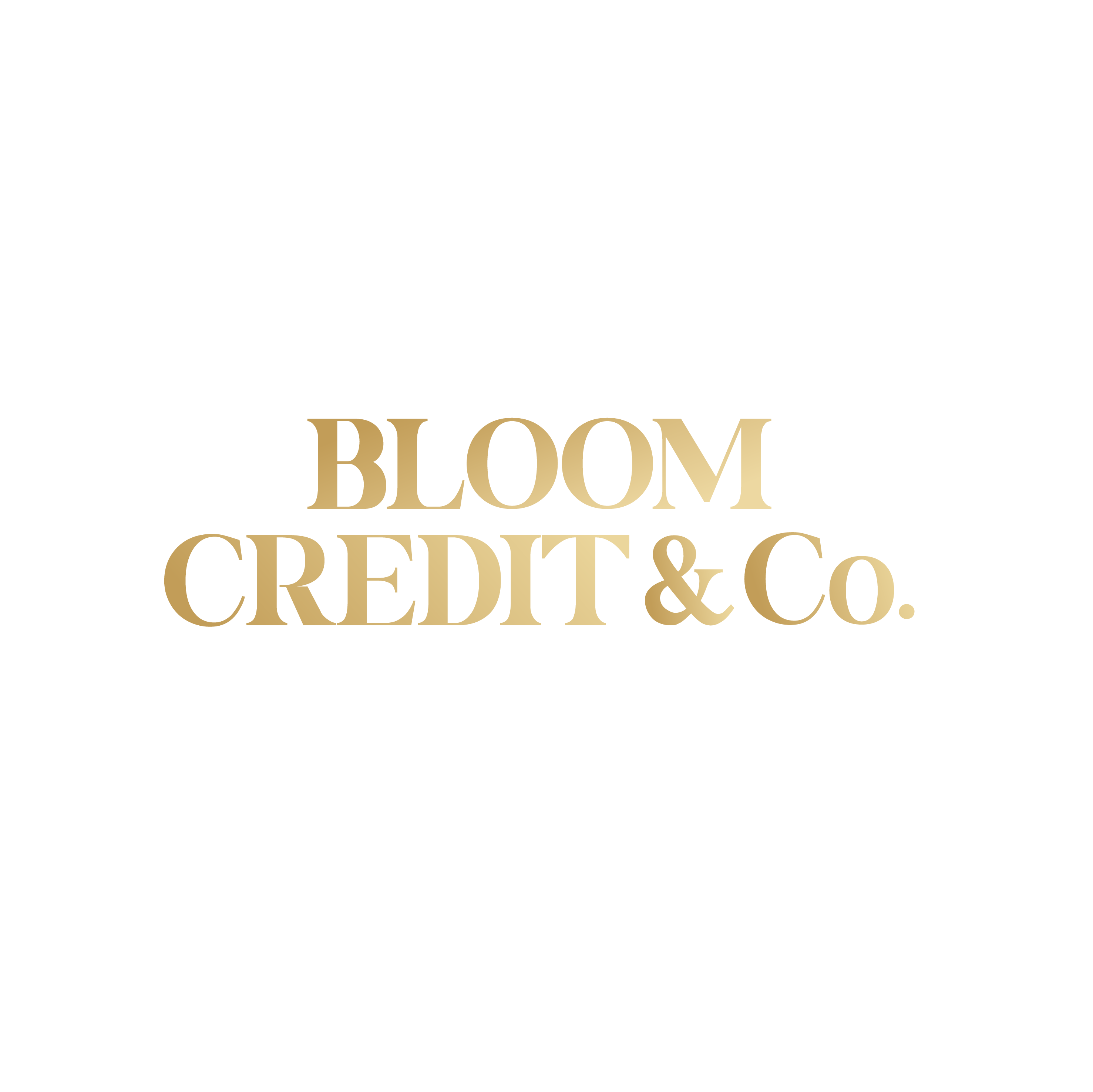 Credit Audit